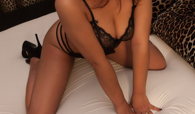 South Holland Escort cash and ideal